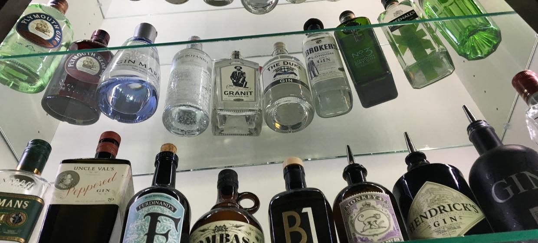 Gin Tonic Tasting 1