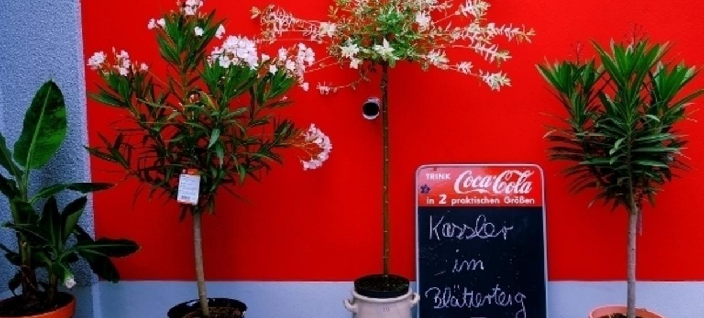 Café Zeitlos 11