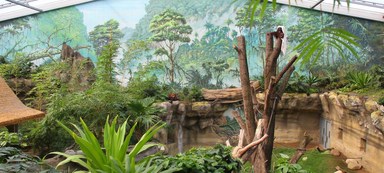 Zoo Rostock 8