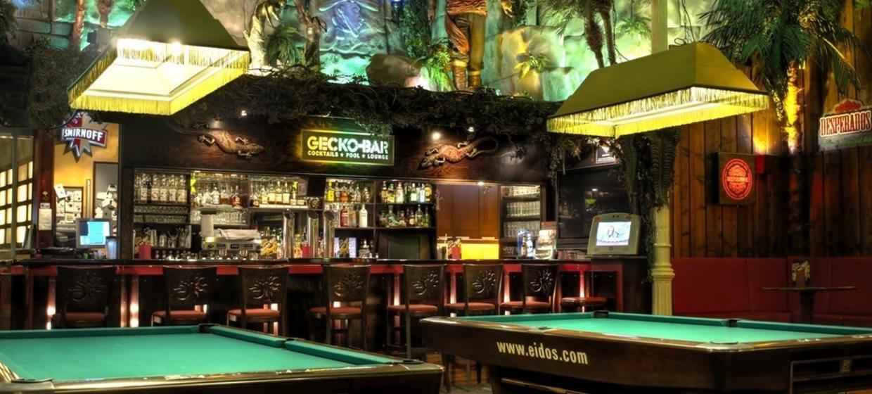 Gecko-Bar 6