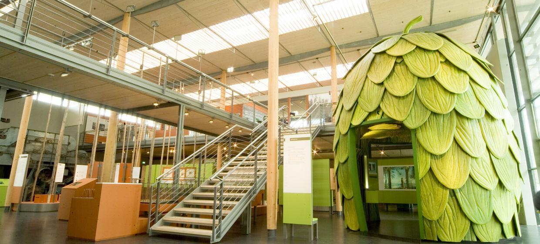 Deutsches Hopfenmuseum 2