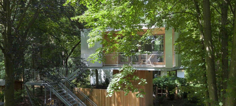 Urban Treehouse 4