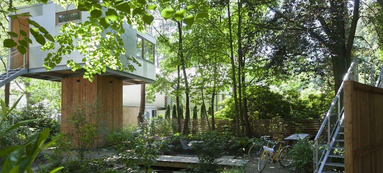 Urban Treehouse 2