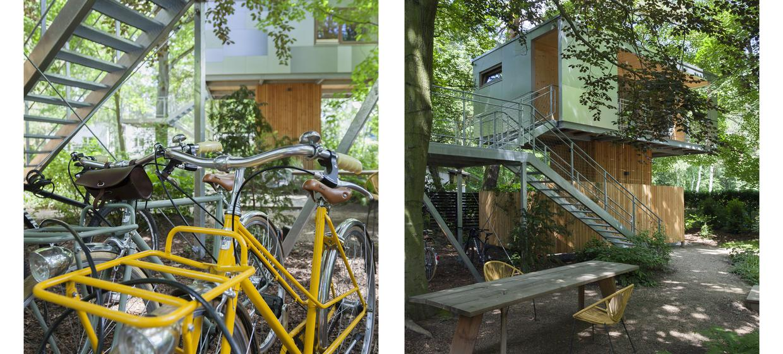 Urban Treehouse 15