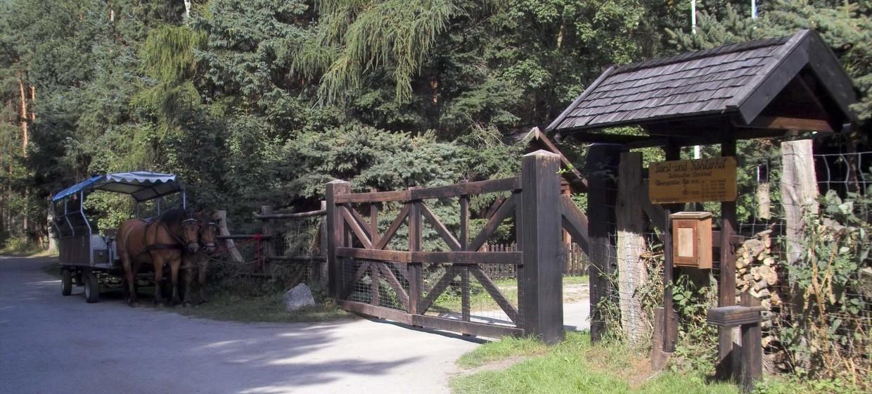 Forst- und Köhlerhof Wiethagen 12