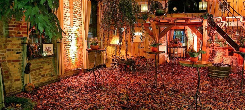 Old Loft & Dizzle's Home - Old Smithy's Dizzle 10