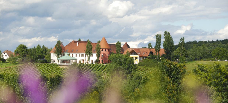 Weinschloss Familie Thaller 24