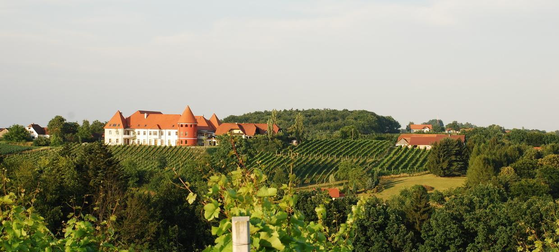 Weinschloss Familie Thaller 26