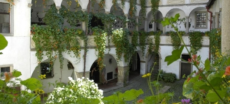 Burg Clam 1