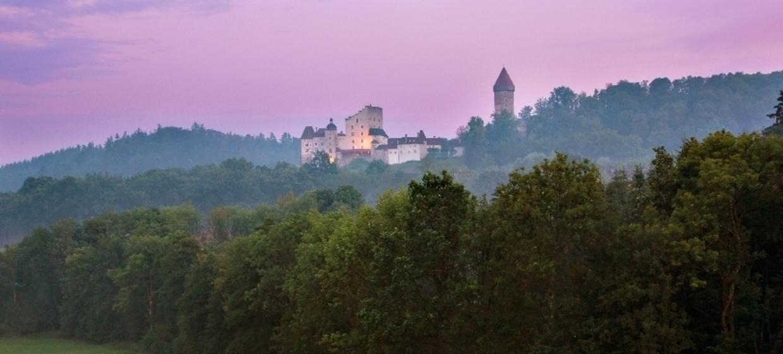 Burg Clam 7