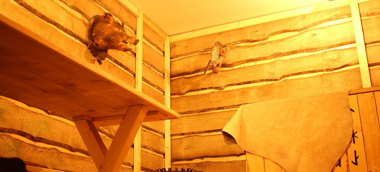 Thout - Escape Room 5