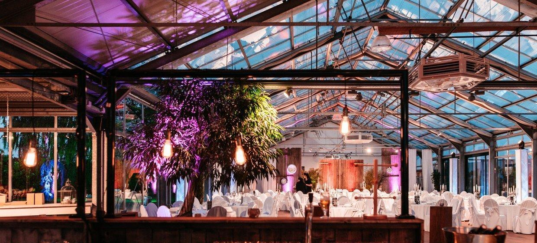 Glashaus Artland 4