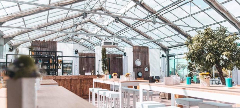 Glashaus Artland 8
