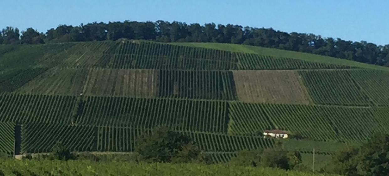 Burg Schaubeck 21