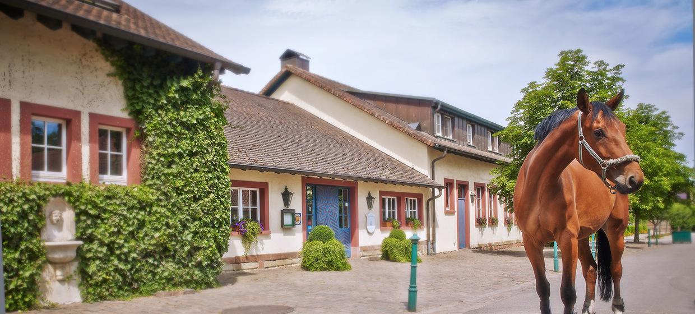 Romantikhotel Linslerhof 6