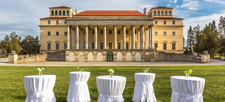 Schloss Esterházy 8