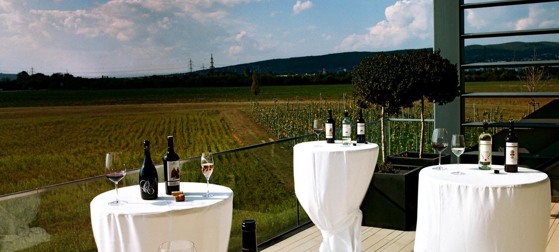 Weingut Esterházy und Kalandahaus 12