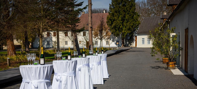 Schloss Lackenbach 8