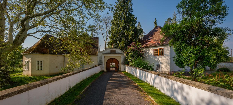 Schloss Lackenbach 5