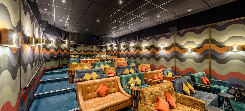 Luxurious Private Cinema  1