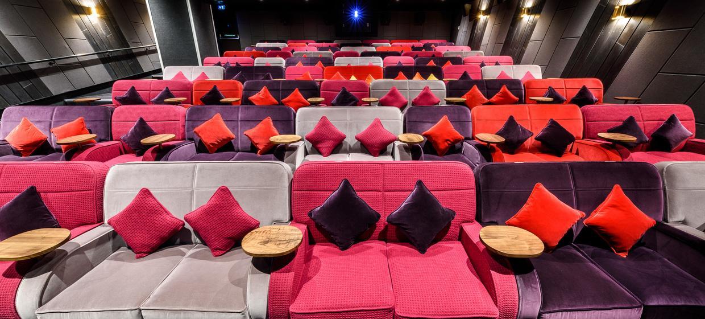 Luxurious Private Cinema  3