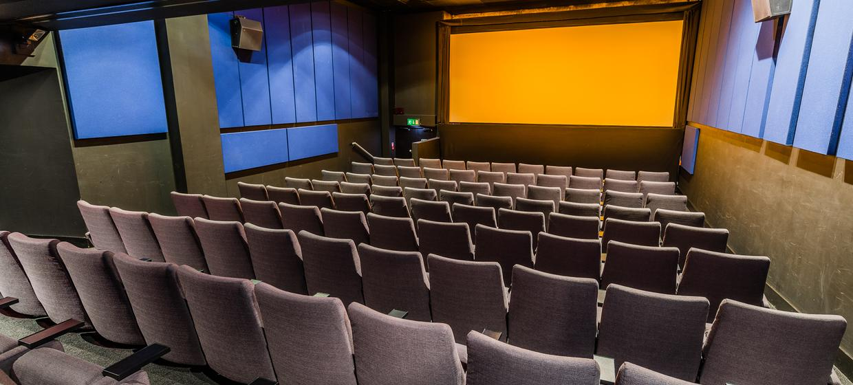 Leading Private Cinema Screens 2