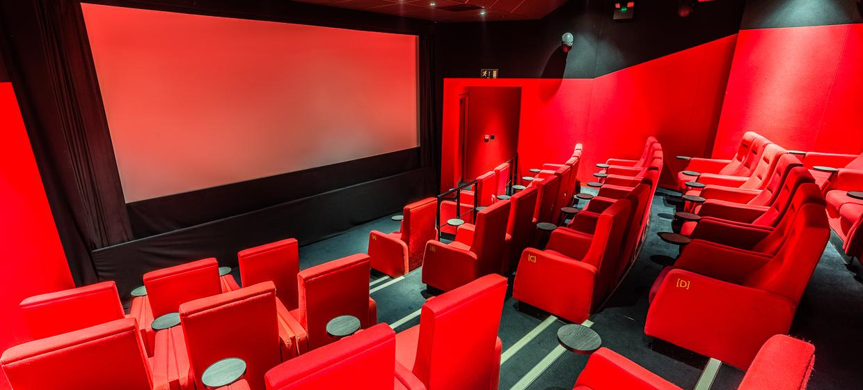 Boutique Cinema Screens with Private Room  1