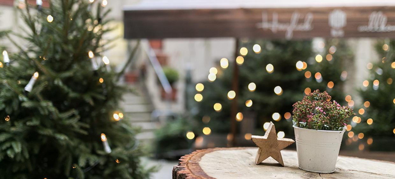 WeihnachtsFEIERN im kleinsten Winterwald Berlins mit original Feuerzangenbowle 1