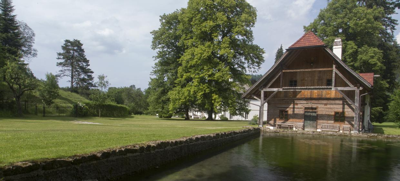 Schloss Ginselberg 24
