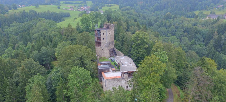 Burg Ehrenfels 2