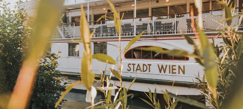 MS Stadt Wien 7