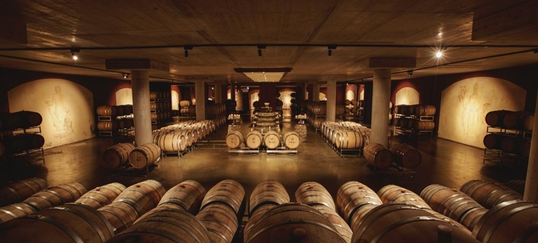 Weinschloss Familie Thaller 15
